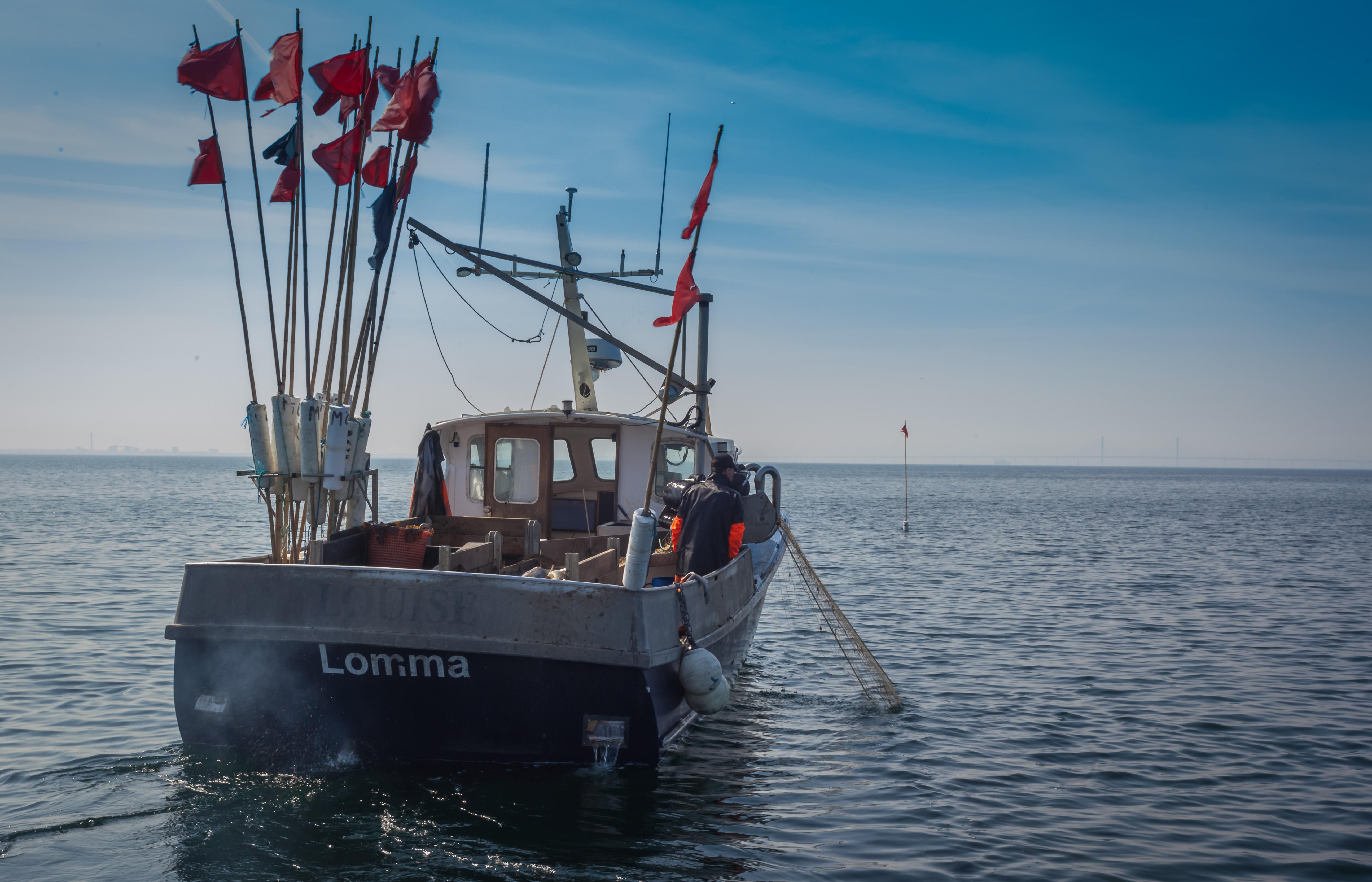 Bild för programpunkt Smaka på Öresund