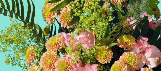 Bild för programpunkt Blomsterhandel Lathyrus AB